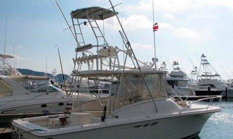 32 Feet Charter Boat